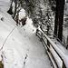 Aufstieg Wildwasserweg (noch ohne Schneeschuhe)