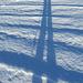 mein langbeiniger Schatten