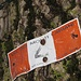 Ci immettiamo sul sentiero dei monti Lariani