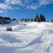 Rischli: auf 1100 m über Meer erstaunlich gute Schneeverhältnisse