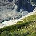 Das Gletscherende der Unteren Grindelwaldgletschers mitsamt Eiger-Felssturz.