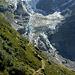 Im Rückblick: Gletscher mit Schafherde...