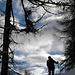 im Abstieg  durch den Wald  nach Embd