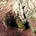 Rabenauer Grund, historischer Bergbauversuch