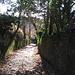 Il magnifico acciottolato che caratterizza la via Santa Brigida e Respaù che sale al castello di Baradello.
