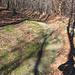 Un affioramento di arenaria della varietà gonfolite che caratterizza la zona.