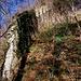 Resti della cinta muraria del castello di Baradello.