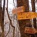 A sinistra il sentiero delle Scale fatto in salita, a destra il sentiero della Croce del Frate fatto in discesa