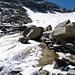 Gletscherblächlein