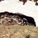 Alois beim Wasserholen im Gaisbachtobel