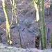 Tiefblick vom K13 hinunter auf den als Wanderweg markierten mittleren Weg im Teufeskellerareal.