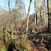 Durch das dunkle Loch links unten kommt man wieder aus dem Schlund heraus. Rechts in den Bäumen die Tüfels-Chopf-Obeliske.