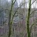 Die markante Felswand der Moräne wird durch die Bäume erkennbar. Mein Track geht rechterhand hoch mit einer weiteren, kurzen Kraxelpassage.