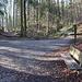 Der eigentliche Eingang in den Teufelskeller. Links der mittlere Weg mit dem Wanderwegzeichen.