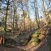 Der Weg in den eigentlich Teufelskeller, die Tüfels-Chopf-Obeliske ist bereits hinter den Bäumen erkennbar.