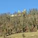 Ruine Schenkenberg von Thalheim aus gesehen