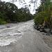 Fluss bei Mindo