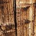 wettergegerbtes Holz der Alp