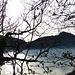 Aufstieg von Melide nach Carona: Dank der kahlen Bäume immer aussichtsreich.