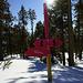 Winterwanderweg/ Schneeschuh Trail