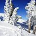 Viel schöner kann Schneeschuh laufen kaum mehr sein…