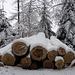 Holz statt Erdöl für das Emmental.....