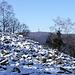 Durchblick zum Großen Feldberg