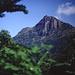 Dschungelbewachsene Berge im Hochland von Sri Lanka