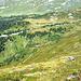 Das nächste Zwischenziel Scharmad-Alpe - es zieht sich.