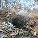 """Gipfelbereich Boreč - An einer der Austrittsstellen von warmer Luft. Gut ist hier zu erkennen, wie sich in der Umgebung der Austrittsstellen bei der derzeitigen Kälte Raureif und Eis bilden, während die weiter entfernten Bäume, Sträucher u. s. w. keinen """"Belag"""" aufweisen."""