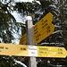 auf dem höchsten Punkt des Eschenberg's (591m)