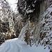 Winterlicher Aufstieg, wir ohne Schneeschuhe