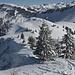 Sicht vom Schneitgrat hinüber zur Alp Bire