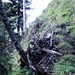 Teilweise steile und auch leicht ausgesetzte Stellen beim Aufstieg nach Gigen nach der Hütte.
