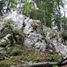 """""""Nordostwand"""" des Geitenberg 1132m"""