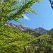 Im Aufstieg zur Planalp: Blick auf den SW-Grat mit Dirrengrind und Twärenegg