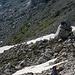 Weg zum Uiberlacher Klettersteig (Nordseite des Trogkofels)