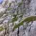 Nach dem Müllerkamin, Blick auf den Gipfelaufbau des Haggenspitz. Folgt man dem Routenverlauf, übersteigt die Schwierigkeit den II. Grad nicht.