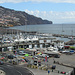 Blick vom Parque de Santa Catarina auf den Hafen von Funchal