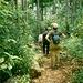 Wanderung in den Leuser Urwald.