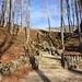 Zugang zur Lourdes-Grotte