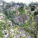 steile Felswände mit zum Teil üppiger Vegetation