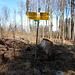 Wegweiser im Widenhau bei P. 708. Hier geht's weiter auf dem Höhenweg - ich entscheide mich für einen Abstecher zum Egelsee, den ich umrunde.