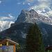 Links Fiescherhörner, in der Mitte Eigerhörnli, rechts Eiger mit NO-Wand.<br />(Danke erneut für die Korrektur an Alpenorni!)