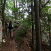 Ein gut markierter Steig leitet uns zu den Felsentoren