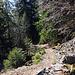 Aufstieg via Wanderweg…