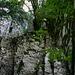 Einstiegsverschneidung in den oberen Felssporn: Es hupfet und springet das Herz eines jeden Bruchpiloten;)