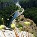 Canyon der Chassezac
