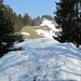 Gratweg zum Denneberg