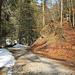 auf dem Weg Richtung Lanzenbach